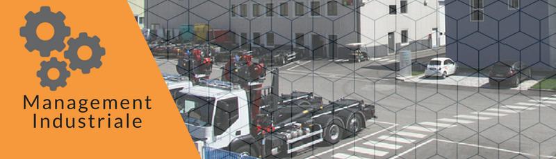Consulenza organizzativa, logistica ed industriale